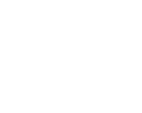 Developed by ProgramArt